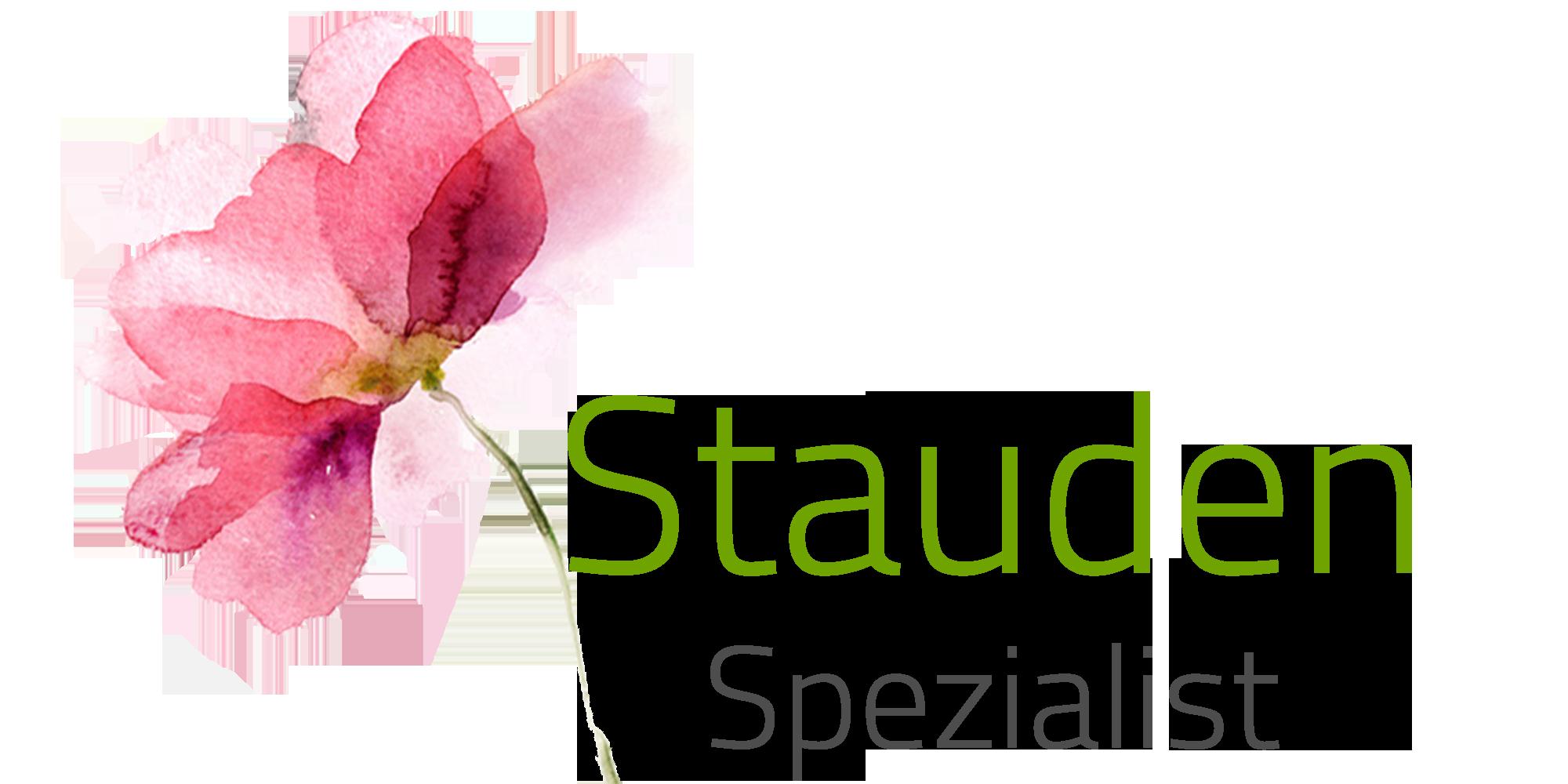 stauden_klein